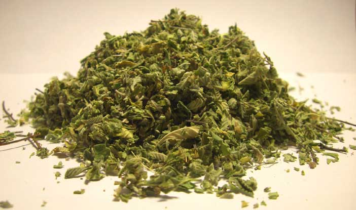 Bulk damiana and mullein wholesale from american bulk herbs
